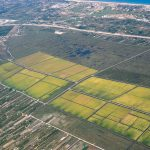 Vista aérea de la marjal de Pego-Oliva (foto ESTEPA).