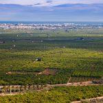 La Plana Baixa desde Betxí (Pep Pelechà).