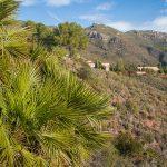 Desert de les Palmes. Monasterios, Ermita de la Madalena (foto Pep Pelechà).