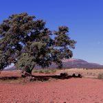 El Mugrón y su entorno desde el Mirador de la Loma de la Boquera, Ayora (foto ESTEPA).