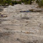 Yacimiento de icnitas de dinosaurio en la rambla del Tambuc. Bicorp (foto Adela Talavera).