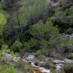 Río Fraile (foto Adela Talavera).