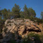 La Cova de l'Aranya