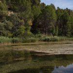 Río Cabriel (foto Adela Talavera).