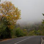 Carretera de Benassal a la fuente en Segures (foto Adela Talavera).
