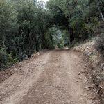 Camino de la Gasulla (foto Adela Talavera).