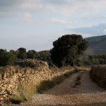 Muros de piedra seca en Ares del Maestre (foto Adela Talavera).
