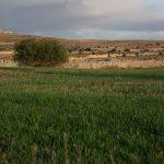Paredes de piedra seca en Villafranca del Cid (foto Adela Talavera).