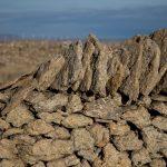 Muros de piedra seca en Villafranca del Cid (foto Adela Talavera).