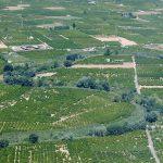Vista aérea de la Ribera del Xuquer (foto ESTEPA).
