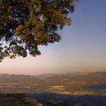 La Vall d'Albaida desde la Serra Grossa (foto Miquel Francés).