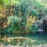 Microreserva de flora y fauna en el río Bohilgues (foto Pep Pelechà).