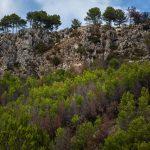 Barranc de l'Infern (foto Miguel Lorenzo).