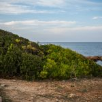 Playa de les Rotes (foto Miguel Lorenzo).