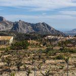 Sierra de Bèrnia y Tàrbena al fondo Altea ybla Serra Gelada (foto Miguel Lorenzo).