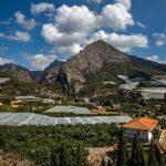 Bancales de Callosa d'En Sarrià