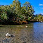 Río Serpis (foto Miquel Francés).