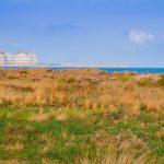 Vistas del Puerto de Sagunto (foto Pep Pelechà)