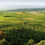 Vall dels Alforins (foto Miquel Francés).