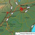 """El Fondó d'Elx, declarado Parque Natural en 1988, (coordenadas 38°10'55""""N 0°45'9""""O) se localiza, a 10 km de la costa, entre los términos municipales de Elche y Crevillente, en la zona que correspondía a la antigua albufera de Elche, que desapareció en el siglo XVIII, debido a la desecación que sufrió para obtener nuevas tierras de […]"""